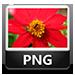 png file type